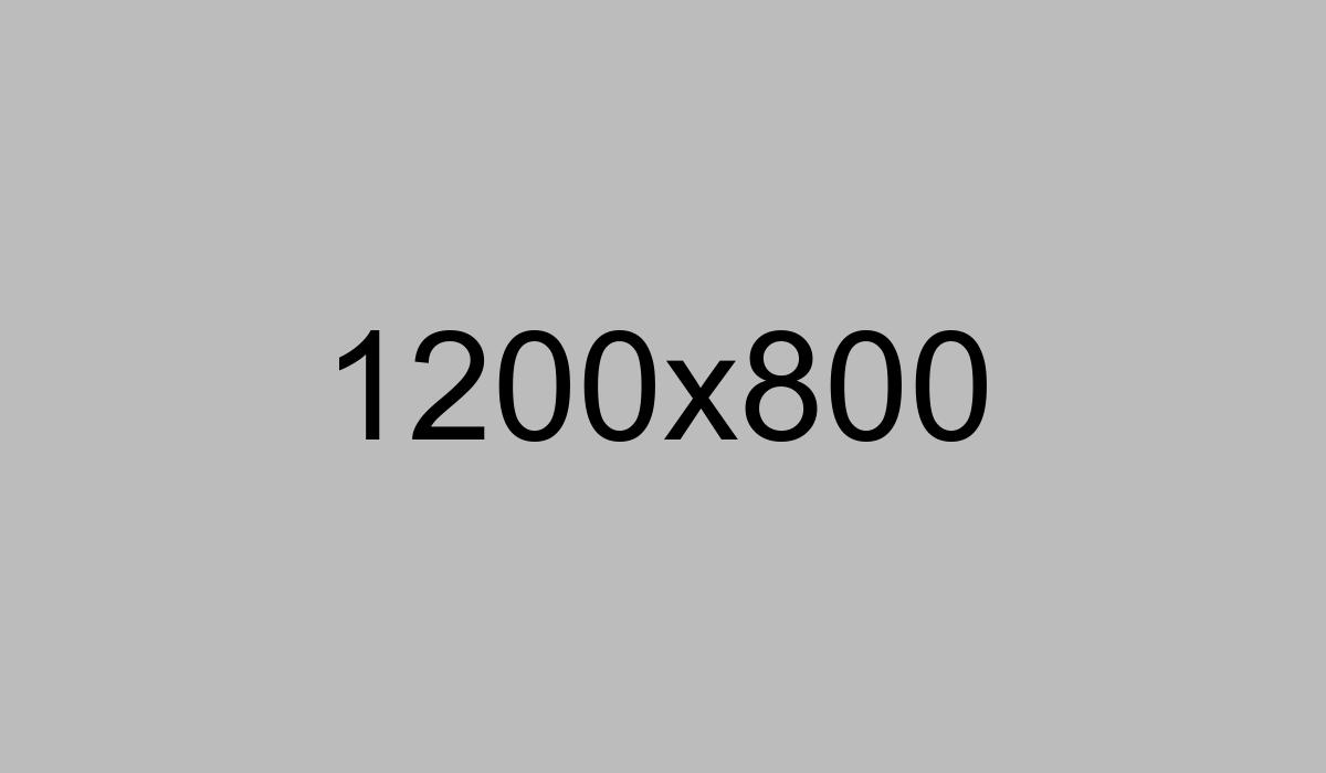 logotype-7